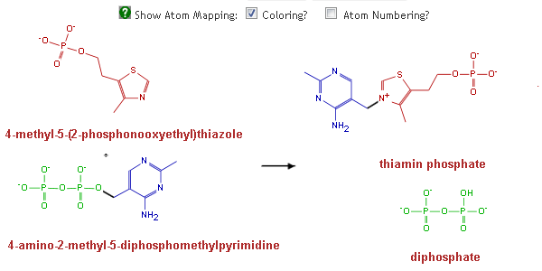Reaction Atom Mappings